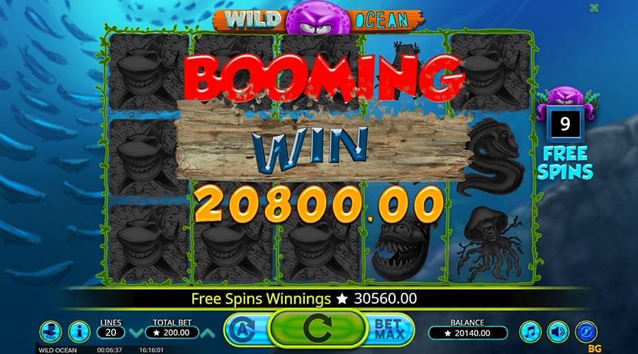 wild ocean win