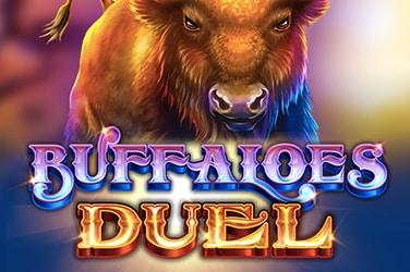 Buffaloes Duel
