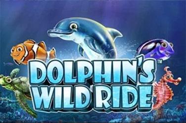 Dolphins Wild Ride