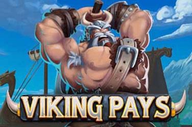 Viking Pays